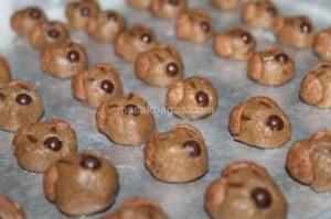 uble Choco Doggie Cookie